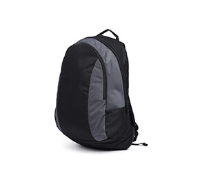 Laptop Black & Grey Backpack