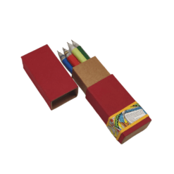 Pen Box (set of 5 pens) – Madhubani Vibrant Theme
