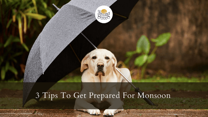 3 Tips To Get Prepared For Monsoon!!!